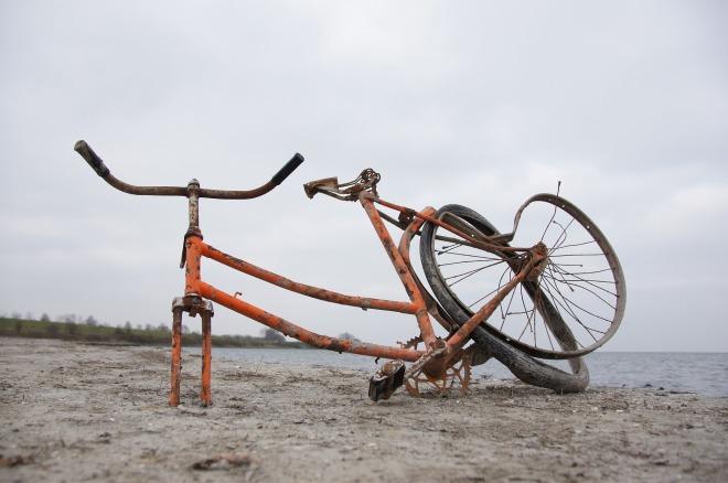 bike-1446920_1920